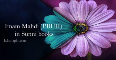 Imam Mahdi (PBUH) in Sunni books