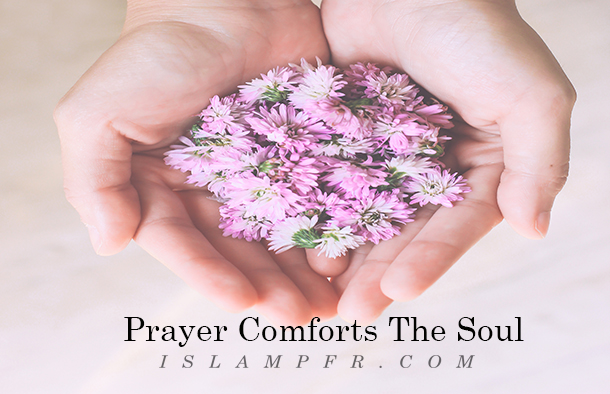 Prayer Comforts The Soul