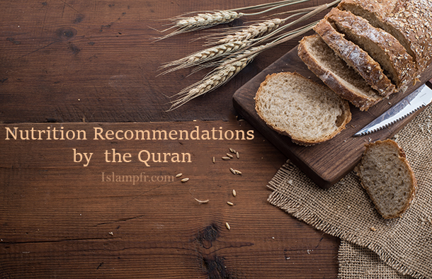 Nutrition Recommendations by Quran
