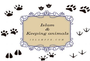 Islam & Keeping animals