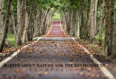 Hadith about nature and the environment