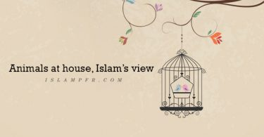 Animals at house, Islam's view