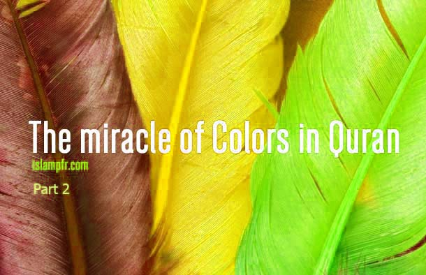 The miracle of colors in Quran –part 2