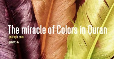 The miracle of colors in Quran –part 4