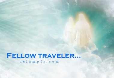 Fellow traveler...