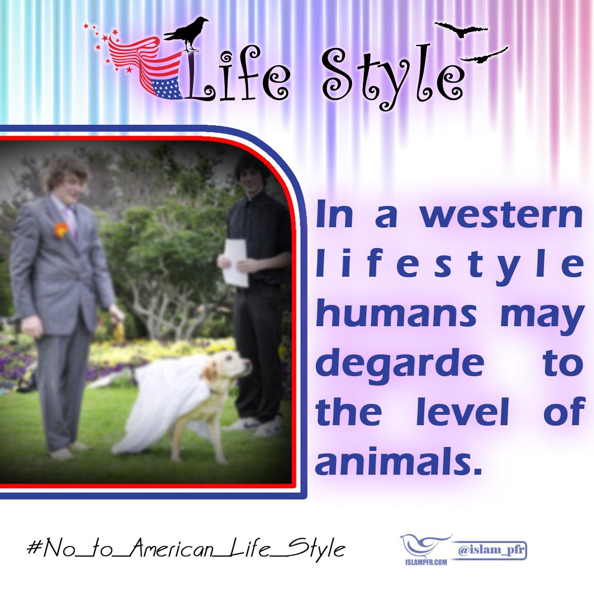american western life